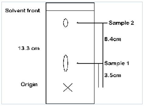 Lab report on paper chromatography essay